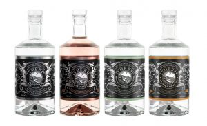 Our selection of Lyme Bay gins