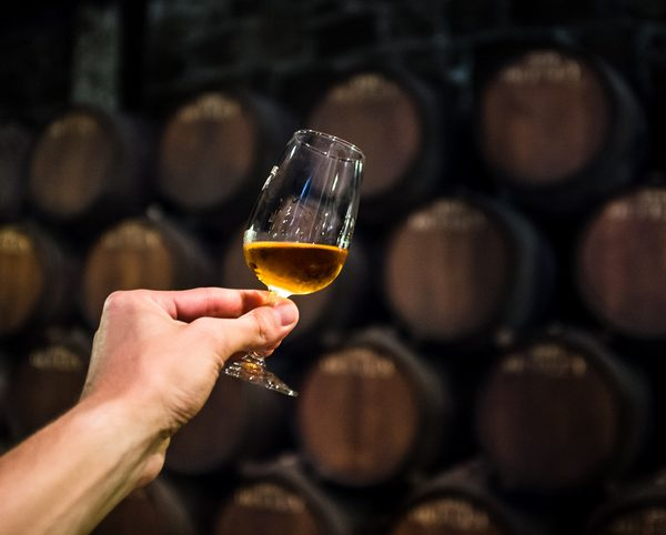 A small glass of craft cider held in front of barrels